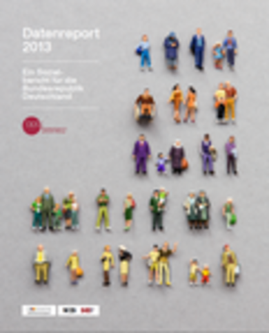 cover datenreport 2013